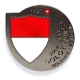 solothurn geocoin | black nickel (re)